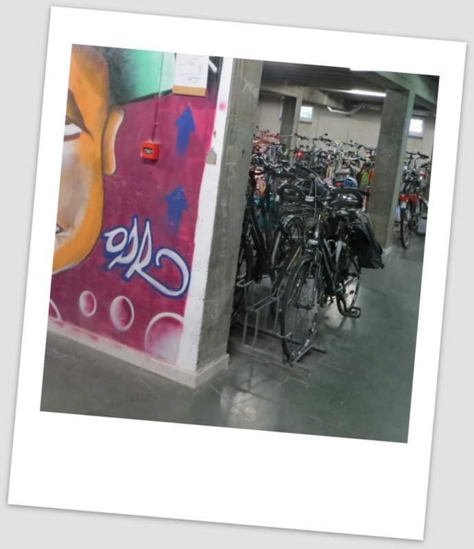 20132014_website_fietsenbergingx